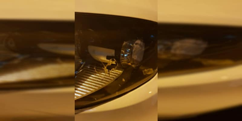 Presidente de Sintraemcali víctima de un presunto intento de robo