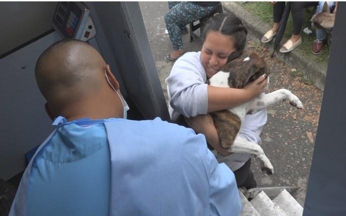 Jornada gratuita de salud animal 'Cali de Pelos' será este sábado en el parque La Flora