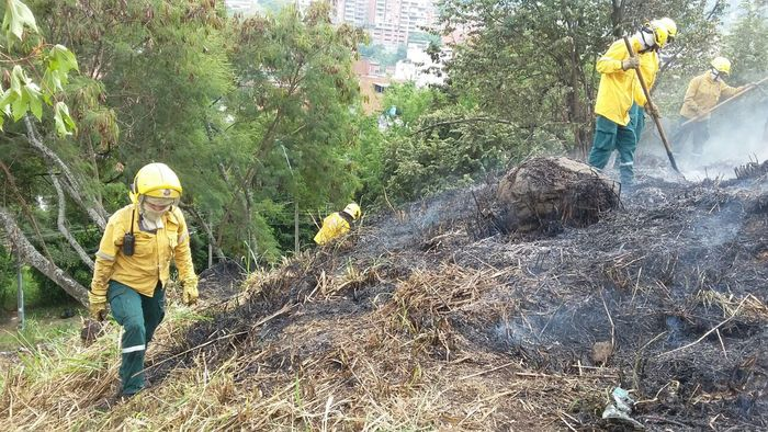 Alcaldía y Secretaría de Gestión del Riesgo proponen iniciativa para evitar incendios en temporada seca