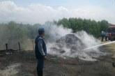 Autoridades desmontaron hornos que quemaban carbón ilegal en Juanchito