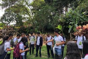 Estudiantes del Darién recibieron cerca de 35 árboles de la CVC para llevar a cabo jornada ambiental