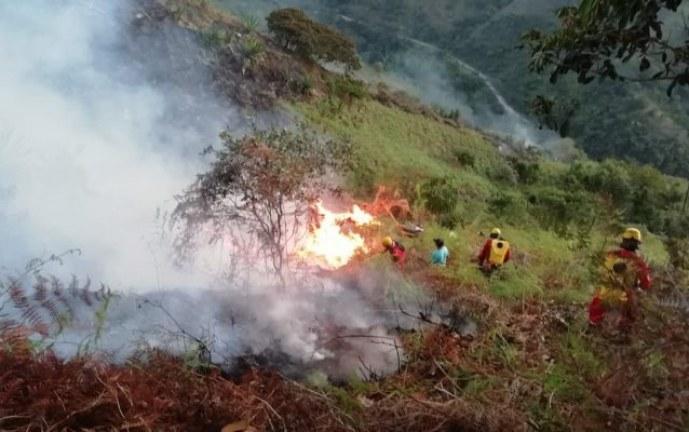 Incendios forestales han arrasado con decenas de hectáreas en el Valle del Cauca