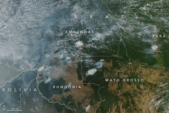 Llamado a los países del G7 a debatir incendios en la Amazonia en próxima cumbre