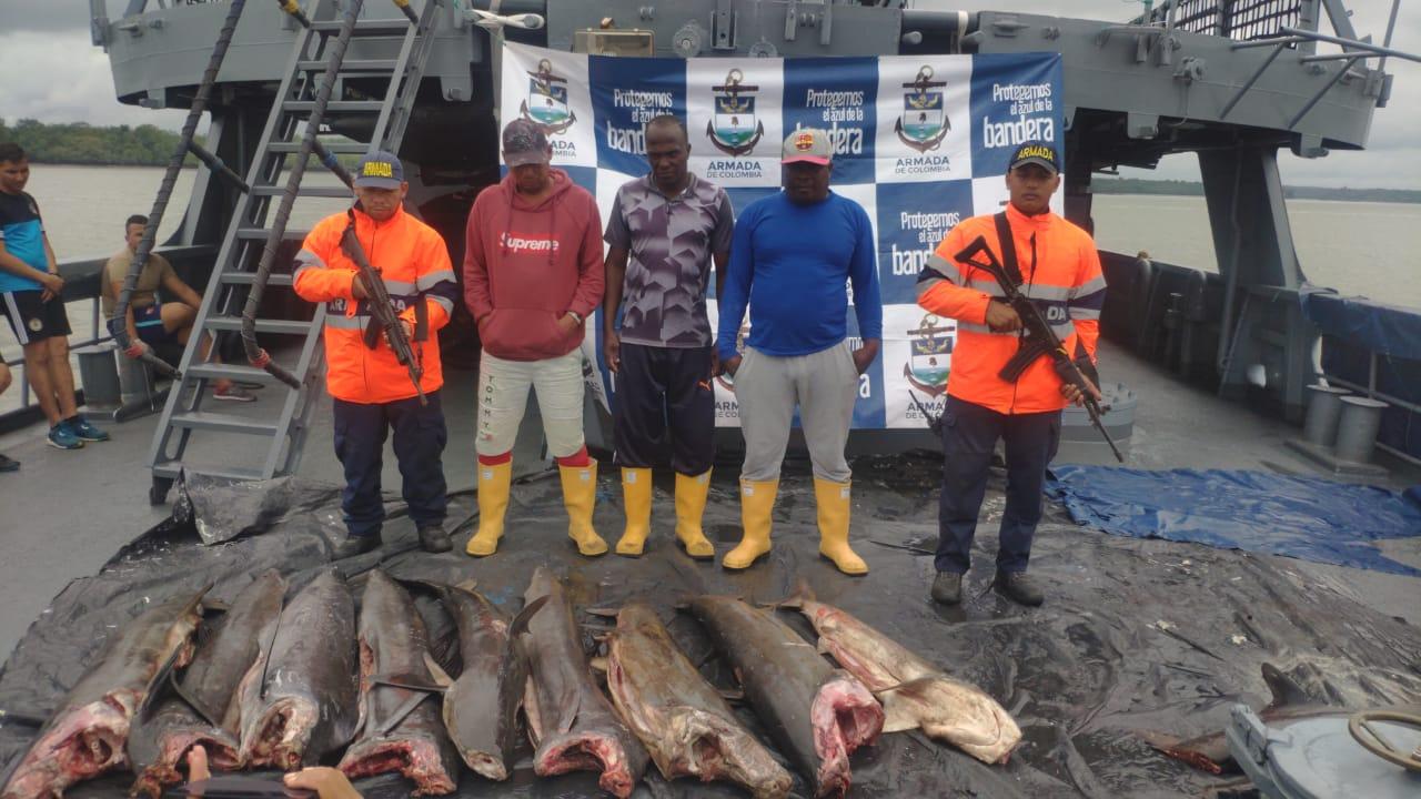 Autoridades confiscan 1050 kg de pesca ilegal en el pacífico colombiano