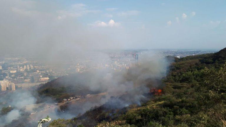 Tras seis días, logran controlar incendio forestal en Dapa que dejó cientas de hectáreas afectadas