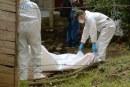 Masacre en Jamundí: hallan cuerpos de 3 hombres y una mujer en zona rural del municipio