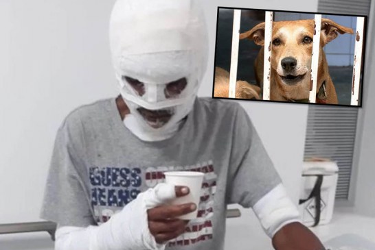 Por salvar a sus mascotas de un incendio en Cali, hombre sufrió graves quemaduras