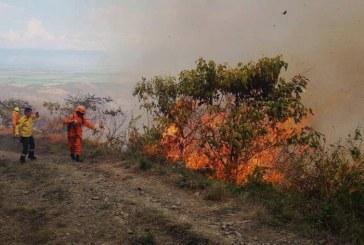 Incendio forestal en cerros de Dapa ha consumido 620 hectáreas de vegetación