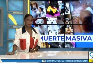 Emisión miércoles 16 de octubre de 2019