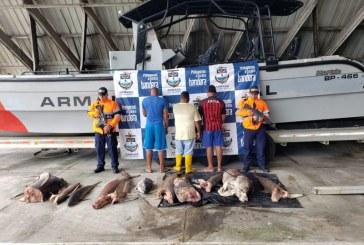 Incautan embarcación ecuatoriana con 270 kilos de pesca ilegal en santuario de flora y fauna de Malpelo
