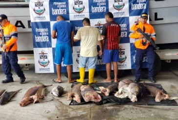 Envían a la cárcel a tres hombres que fueron 'pillados' pescando en Santuario Malpelo