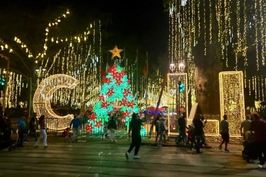 En fotos: Así es el alumbrado 'Navidad en Mi Cali Bonita'