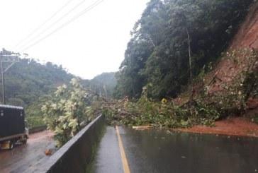 Bloqueada vía Buga – Buenaventura por desprendimiento de tierra tras fuertes lluvias