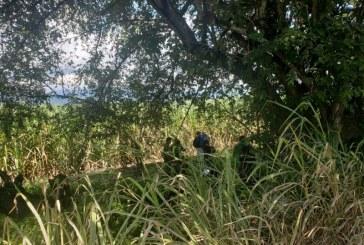 Identifican a joven que fue hallado con un disparo en la cabeza en vía Cali – Jamundí