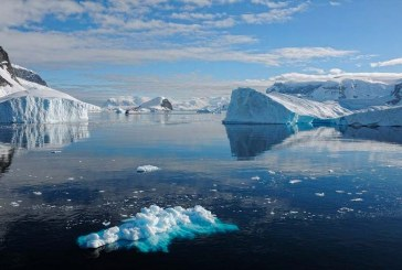 Alerta: anomalías climáticas en la Antártida se hacen cada vez más frecuentes