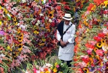 Se dispara exportación de flores en Colombia por temporada de San Valentín