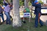 Con 'sembraton', Dagma y empresa privada buscan recuperar zonas verdes de Cali