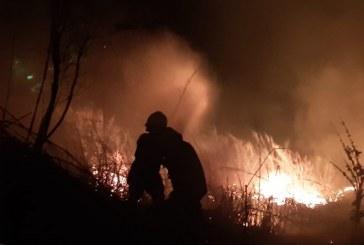 Cerros de Terrón ardieron más de 5 horas, hay 9 hectáreas afectadas y un animal herido