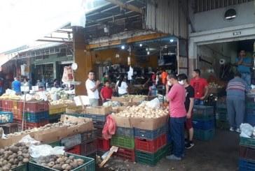 Abastecidas y con baja de precios se encuentran central de abasto y plazas de mercado en el Valle