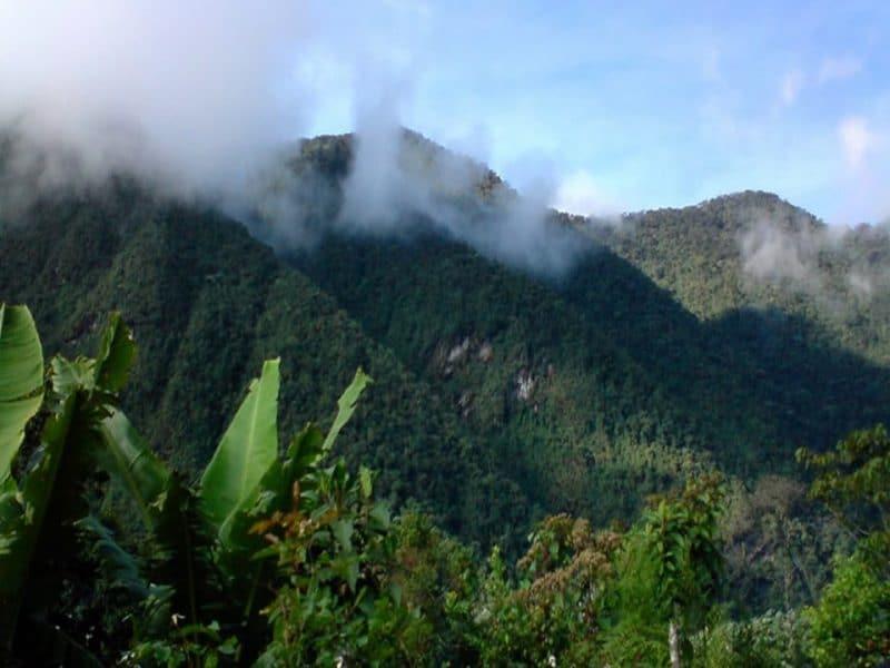 Incrementarán operativos en el Parque Nacional Farallones a causa de la minería ilegal