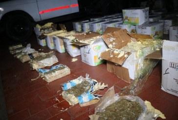 Con nuevas formas de ocultamiento, delincuentes pretenden comercializar droga durante la cuarentena