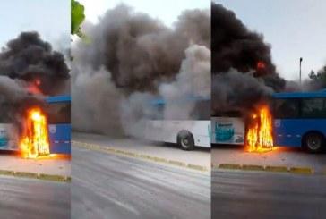 En video: investigan las causas de incendio que afectó un bus articulado del Mío en El Pondaje