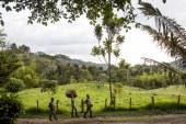 Gobernador de Nariño denuncia nueva masacre en Tumaco