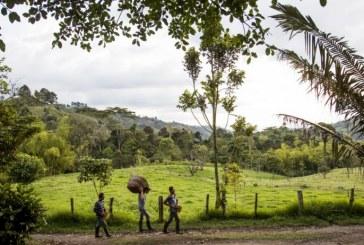 Las 4 víctimas de la masacre en Nariño fueron sacadas a la fuerza de sus casas