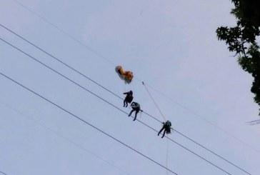 Rescatan a parapentista que quedó enredado en cuerdas de alta tensión por 11 horas