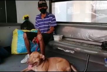 En Cali: habitante de calle ayuda con la alimentación de cachorros