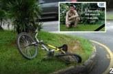 Jardinero del Zoológico de Cali murió tras ser arrollado por conductor ebrio