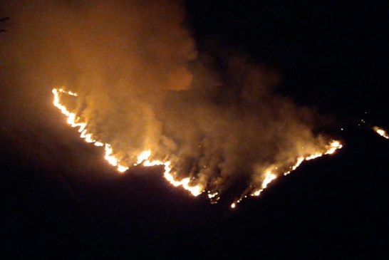 Incendio de cobertura vegetal en zona rural de El Cerrito, Valle