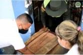 Rescatan 17 mascotas encerradas en cajas en un inquilinato de Palmira