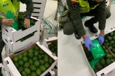 Hallaron 1.572 kilos de cocaína ocultos en un cargamento de frutas en Buenaventura