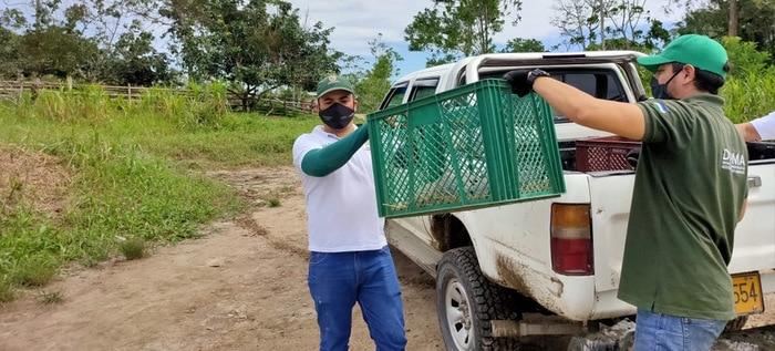 El Dagma liberó y reubicó en la Amazonía colombiana fauna silvestre