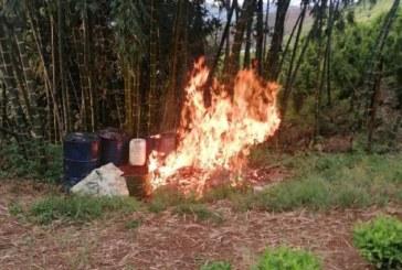 Laboratorio de procesamiento de pasta de coca fue destruido en Jamundí