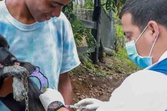 Avanza el proyecto de construcción del Centro de Bienestar Animal en Cali