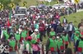 Indígenas del Cauca expulsarán actores armados de sus territorios