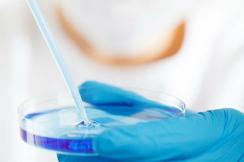 Un año de pandemia: las incógnitas que la ciencia aún tiene que resolver