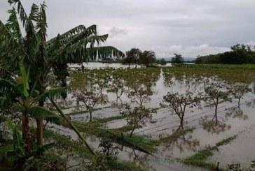 Gobernación decretó calamidad pública en todo el Valle por ola invernal