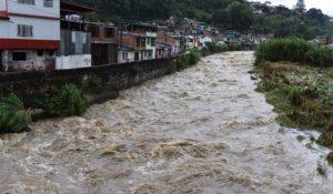Graves afectaciones dejaron las fuertes lluvias que se registraron en varios municipios del Valle; donde se reportó la caída de árboles y remoción en masa