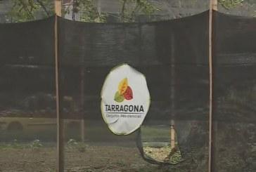 Polémica sin fin, constructora del proyecto Tarragona afirma tener permisos
