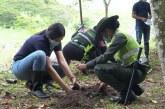 Siembran 500 árboles nativos en el Ecoparque del Río Pance