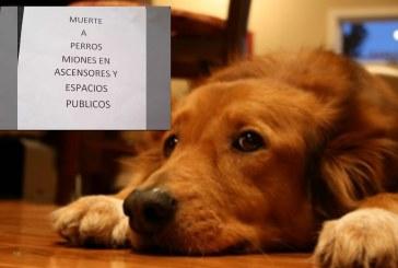 """""""Por Miones"""": rechazo en Cali por amenazas contra mascotas en unidad residencial"""