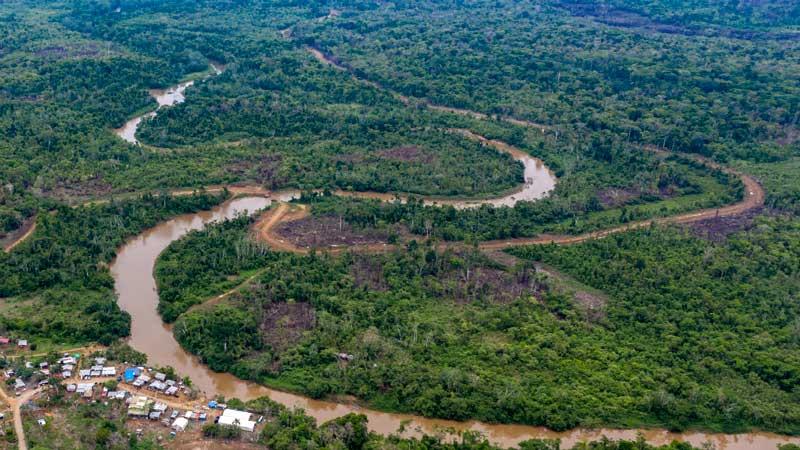 Unicef alerta sobre drástico aumento en migración infantil por selva de Panamá