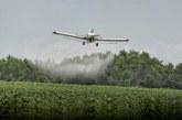 Gobierno expide decreto para regreso de la aspersión aérea con glifosato