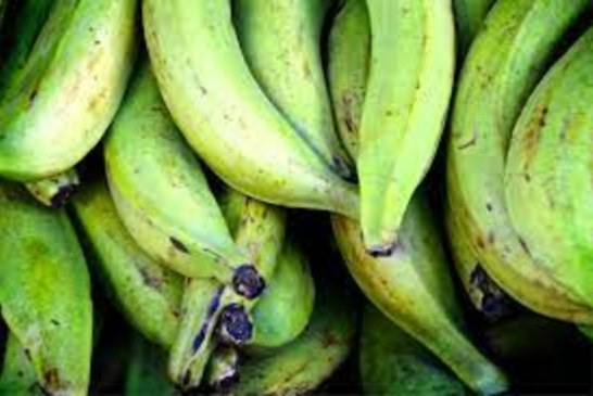 Empiezan a llegar productos a 'Santa Elena', bajan algunos precios
