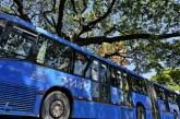 Avanza la reactivación de rutas del MIO en más sectores de Cali