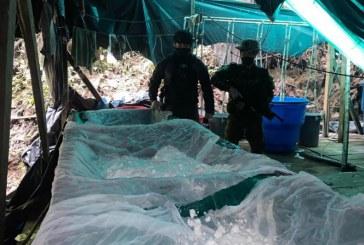 Incautadas seis toneladas de cocaína en Nariño, al parecer, del ELN