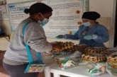Programa de Alimentación Escolar entregó 25 mil paquetes alimentarios